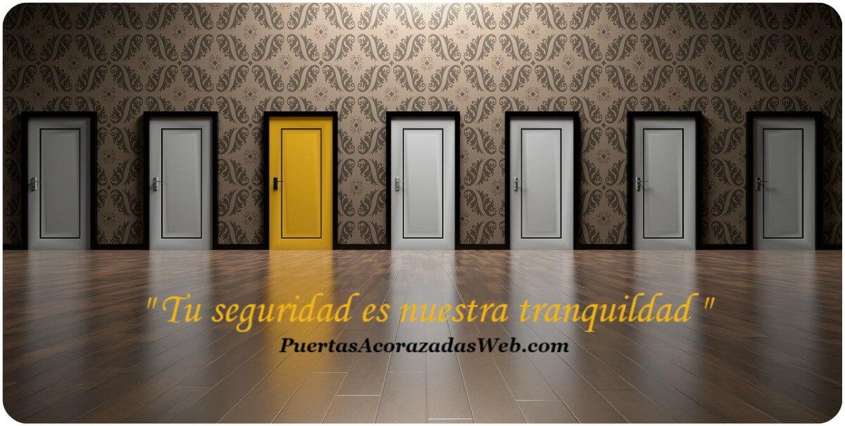 puertas acorazadas Pinto